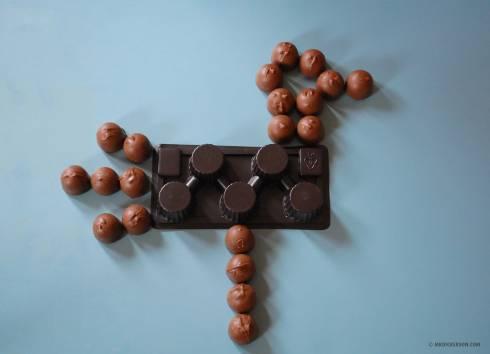 Cherry-Chocolates-Bird