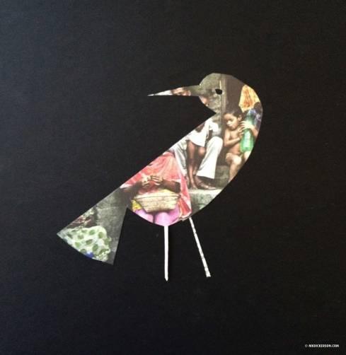 WJS-Bird