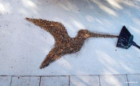Leaf-Mulching-Bird