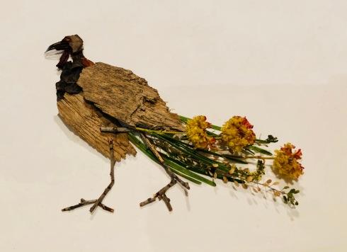 thanksgivingbird